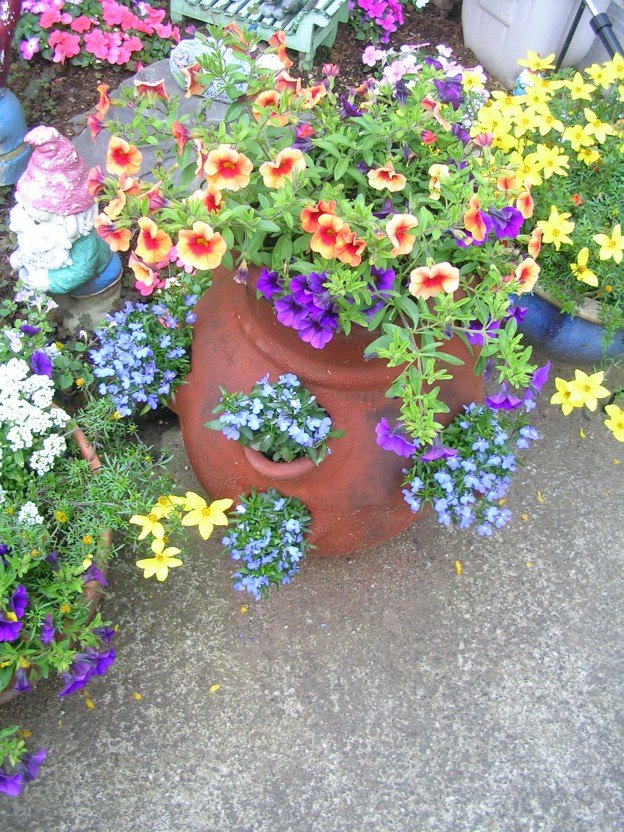 Container flowers