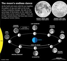 The Moon Cycle (from moonconnection.com)