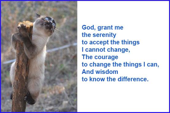 serenity prayer44