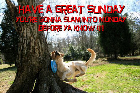 July 19 2015 Good Morning Welcome To A Super Sunday Folks