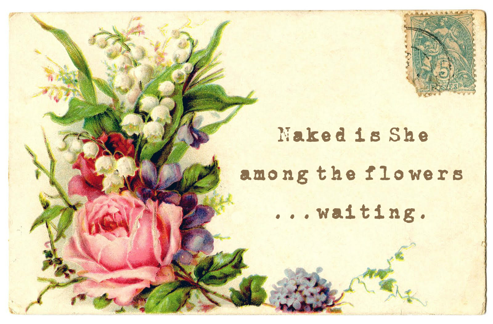 Naked is She postcard