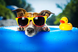 Summer tan!