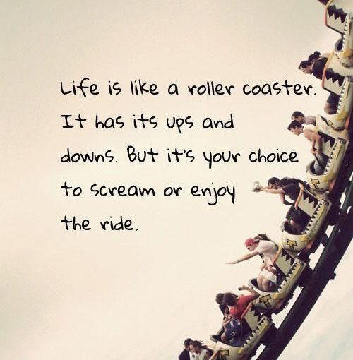 Life is a roller coaster enjoy your ride