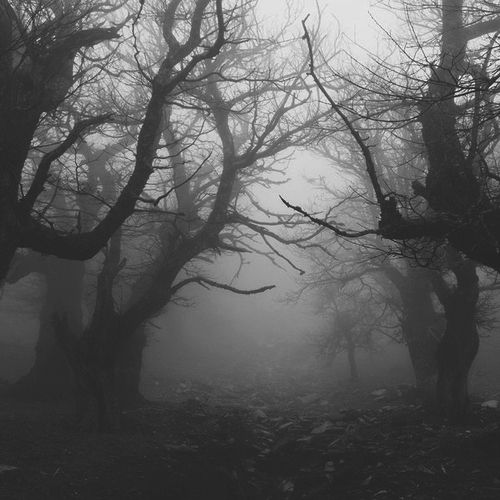 Walking with darkness